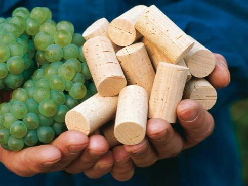 Weinkorken 45 x 24